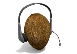 Headphones on coconut